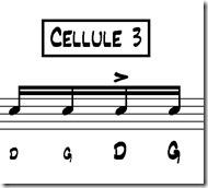 seben cellule 3
