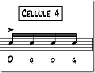 seben cellule 4